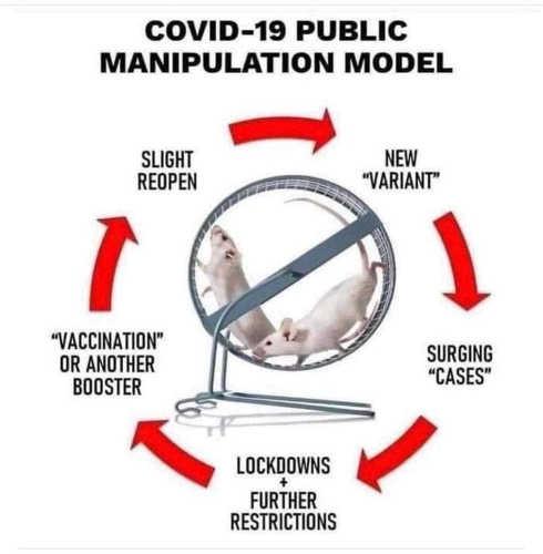 covid-19-manipulation-model-variant-vaccination-lockdowns-cases-slight-reopen